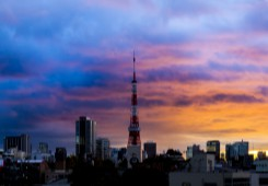 with Tokyo-tower